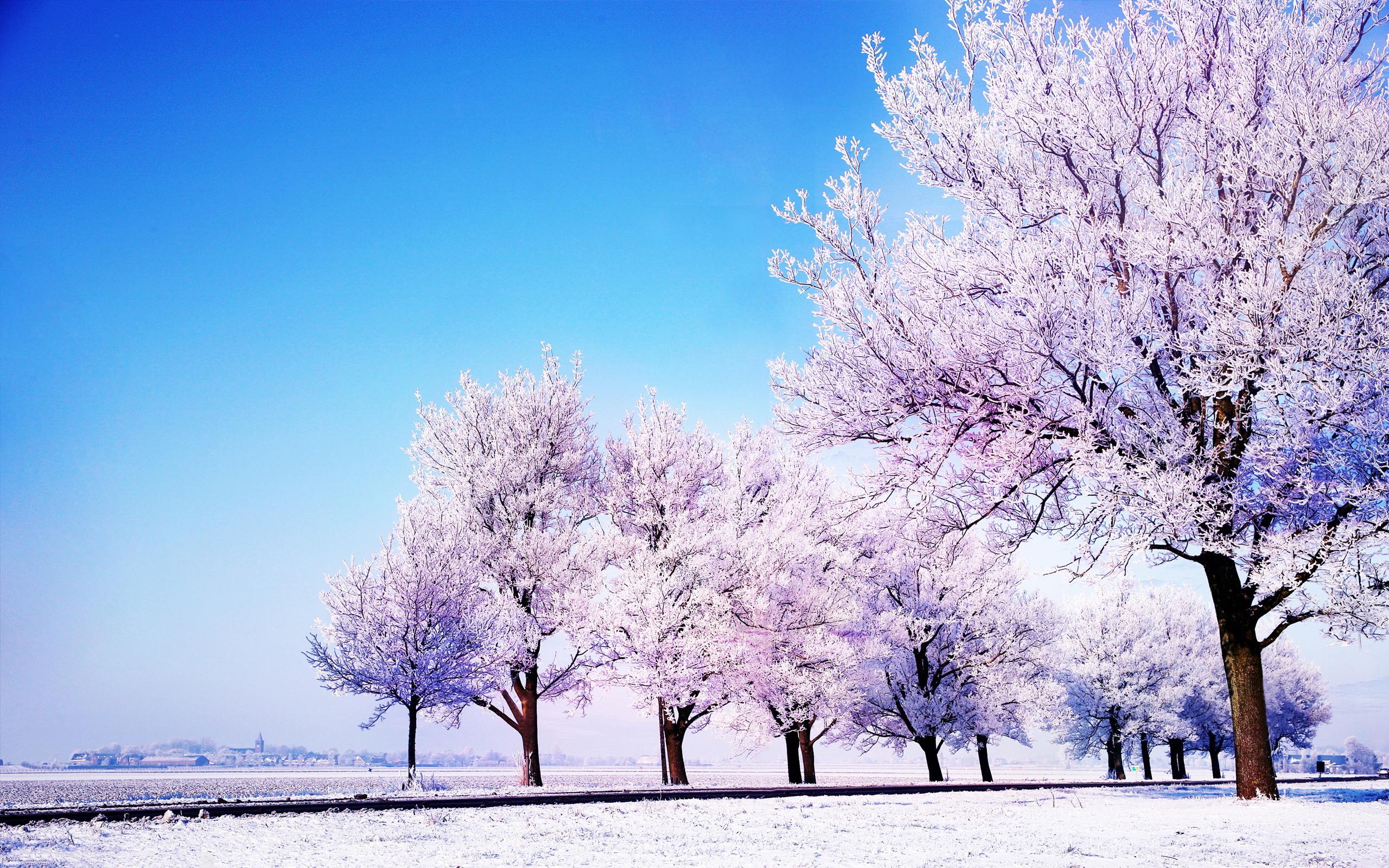Afbeeldingsresultaat voor winter