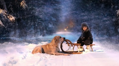 winter-trees-snow-snowflakes-sled-child-boy-dog-wallpaper-1920x1080