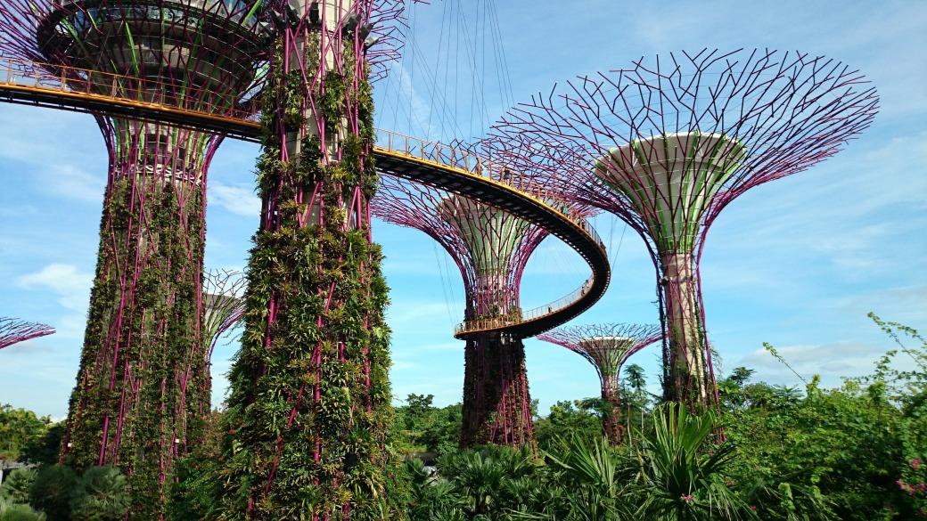 singaporegardensbythebay017